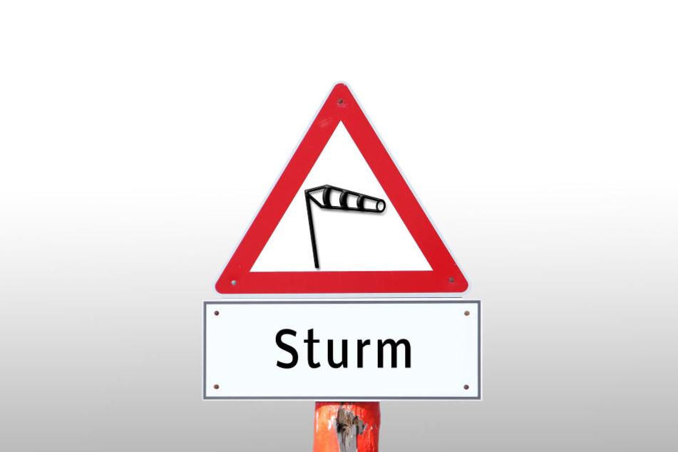 Sturm Sabine soll kräftige Orkanböen bringen, so die Wetterexperten.