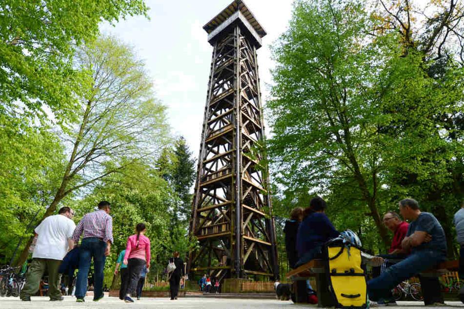 Das Archivbild aus dem Jahr 2014 zeigt den Goetheturm wie er ursprünglich aussah.