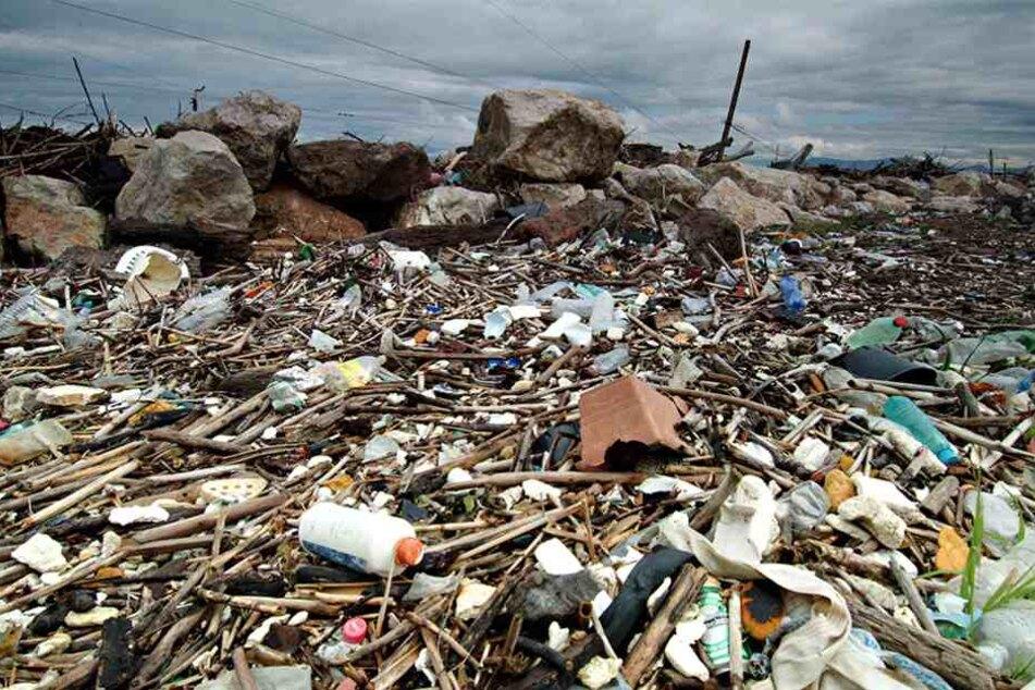 Seit Jahren kommt Italien der eigenen Müllentsorgung nicht nach - jetzt soll Deutschland herhalten.