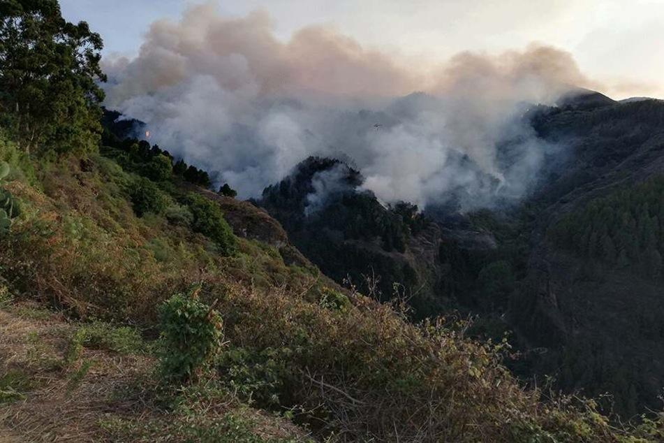 Mehr als 2000 Menschen hätten im Zentrum der Insel in Sicherheit gebracht werden müssen, teilte der Sicherheitsrat der kanarischen Regierung mit. Der Brand habe sich schnell auf mehr als 400 Hektar ausgebreitet.