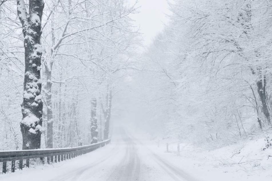 Die Wege zu den Gaststätten waren von Bäumen und Schnee blockiert. (Symbolbild)