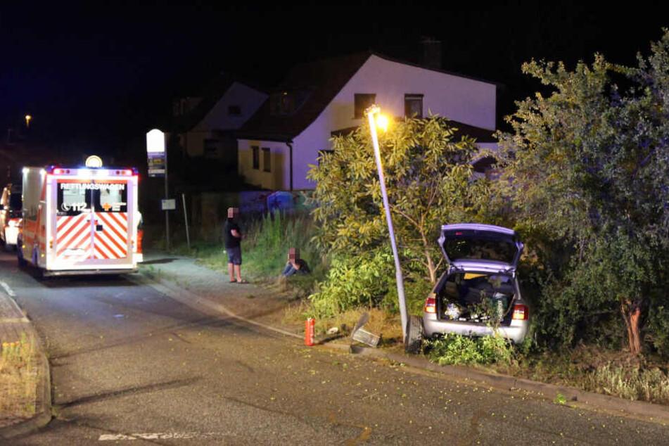 Nachdem der Audi über den Kreisverkehr geflogen ist, landete er im gegenüberliegenden Gebüsch.
