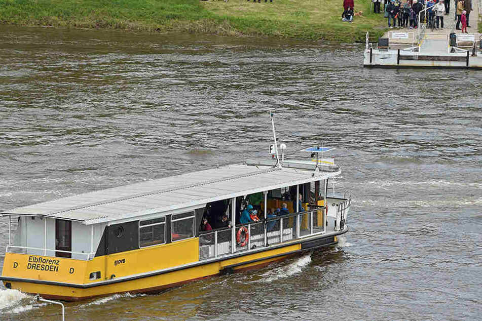 Gruselfund! Spaziergänger entdecken Leiche in der Elbe