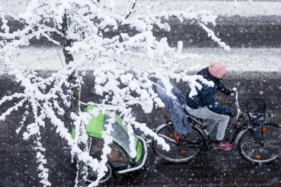 Weiße Weihnachten in NRW? Das sagen die Wetter-Experten