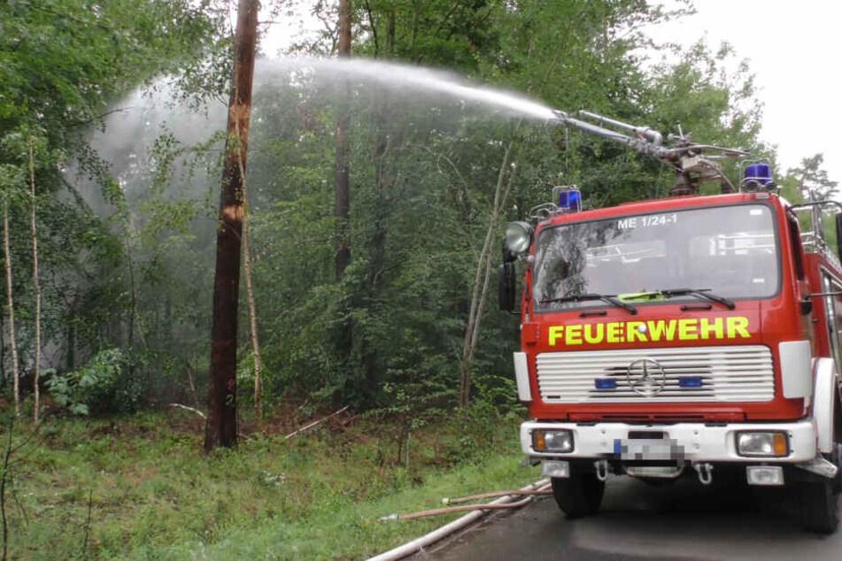 Drohen weitere Explosionen? Waldbrand nahe Munitionslager wird für Feuerwehr zum Kraftakt