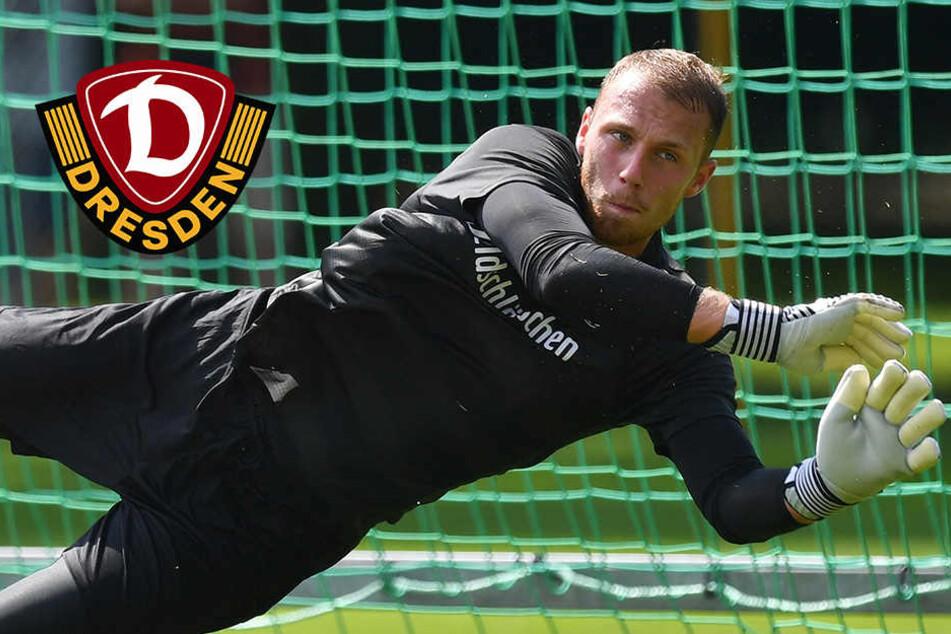 Nach zwei Jahren bei Dynamo! Schwäbe will nach Dänemark