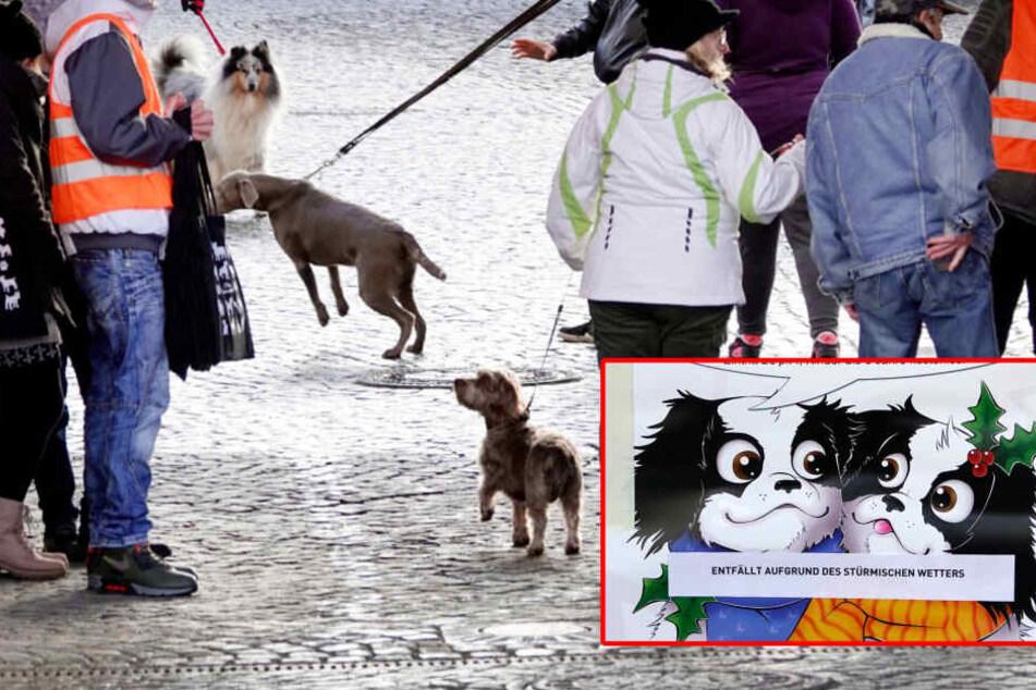 Hunde-Weihnachtsmarkt abgesagt: Das ist der traurige Grund