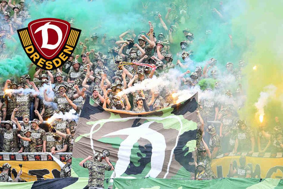 Hammer-Strafe! So viel muss Dynamo jetzt wegen seiner Fans blechen