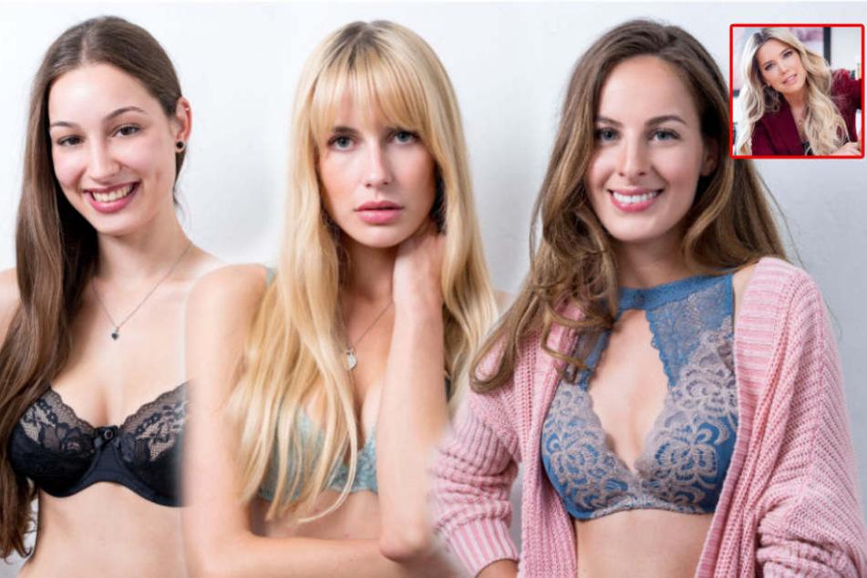 Sylvies Dessous Models Welche Kölner Schönheit Kann Sylvie Von