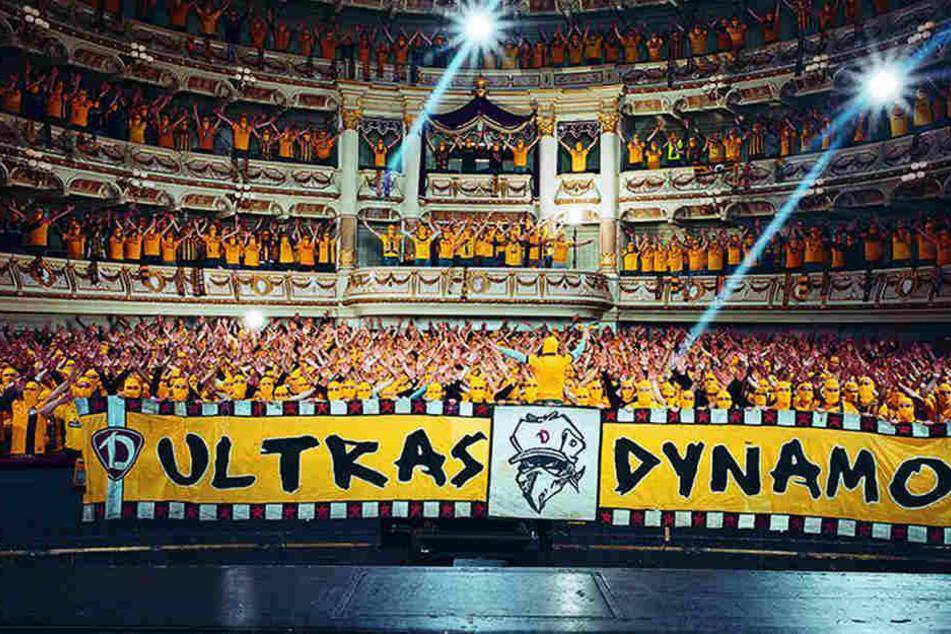 Dieses Bild ist der reinste Dynamo-Wahnsinn!