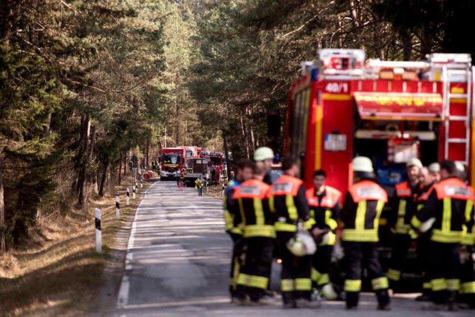 Die Feuerwehren weisen auf absolutes Feuerverbot im Wald hin. Ansonsten kann schnell ein Waldbrand entstehen. (Symbolbild)