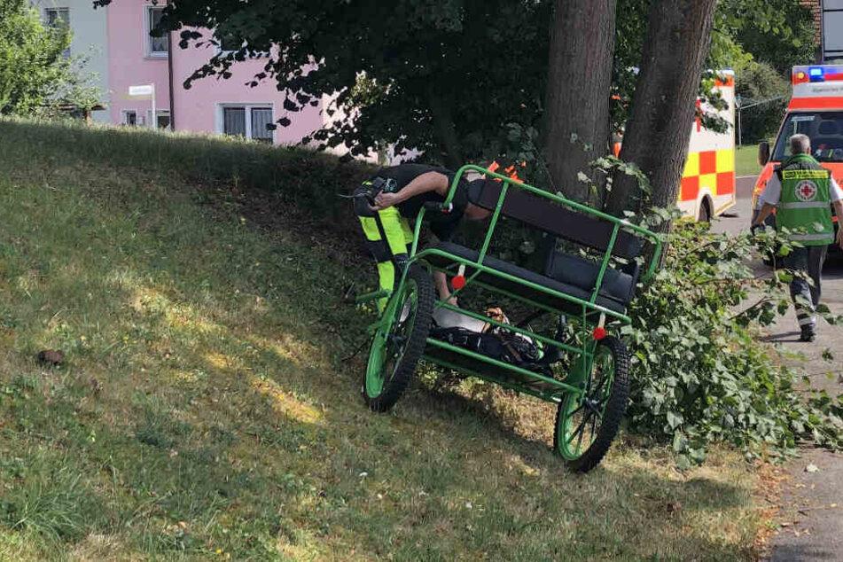 Die Kutsche prallte gegen eine Baumgruppe.