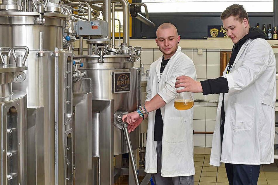 Das wahrscheinlich beste sächsische Bier ... wird an der Brauerschule in Dresden gebraut.