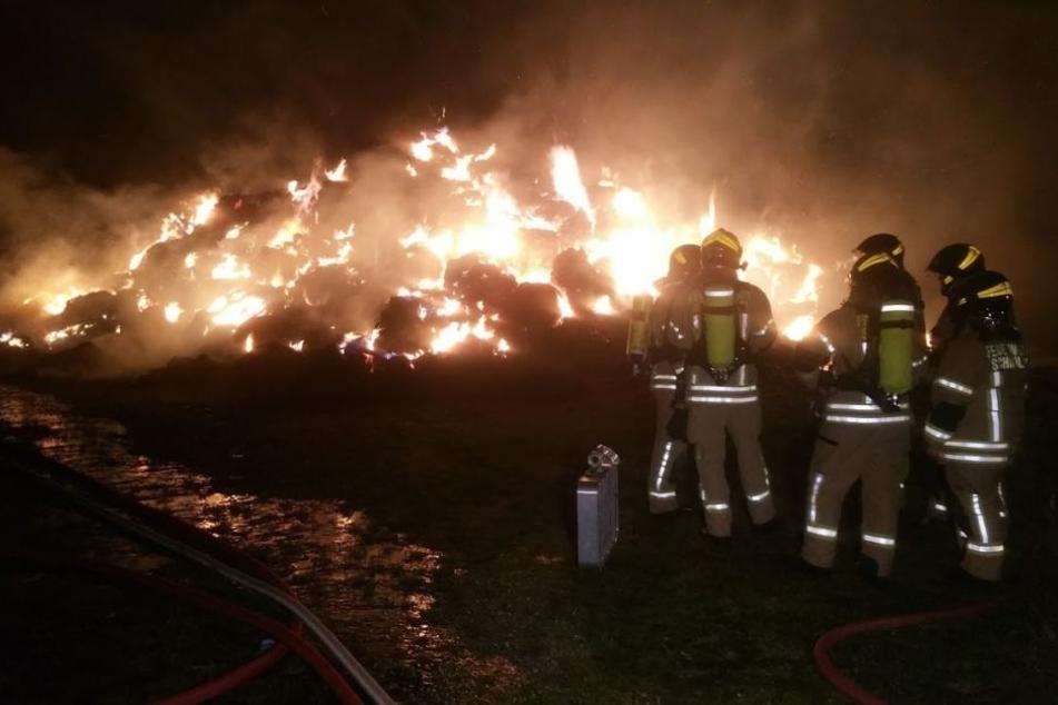Mehrere Dutzend Feuerwehrleute mussten ausrücken, um den lichterlohen Brand unter Kontrolle zu bekommen.