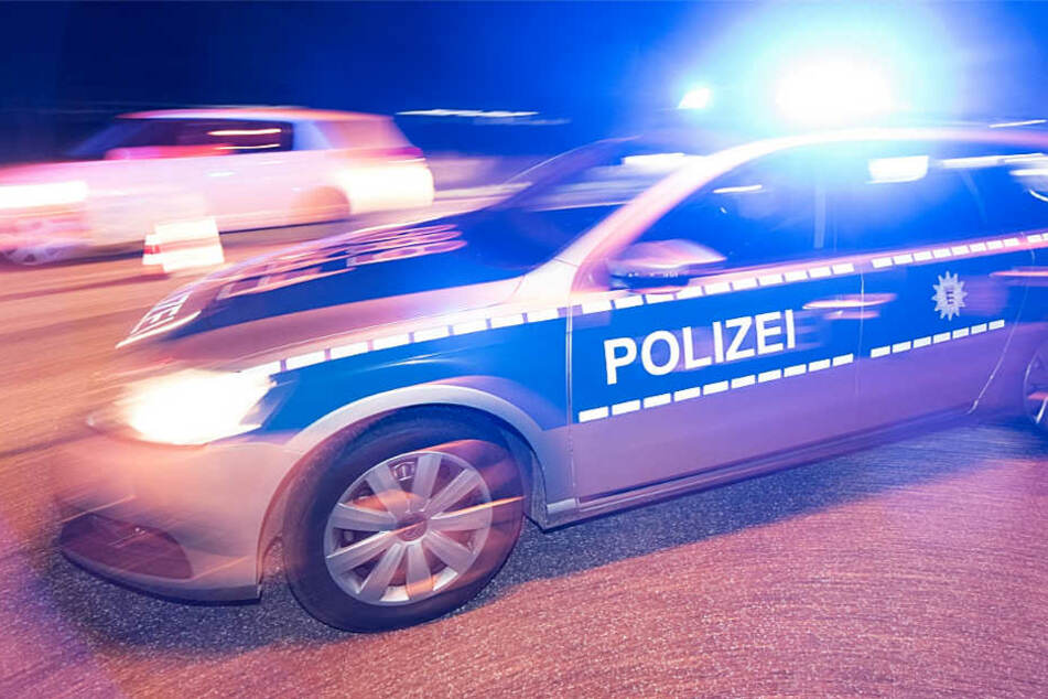Die Polizei rückte an und kümmerte sich um den verunglückten Hund (Symbolbild).