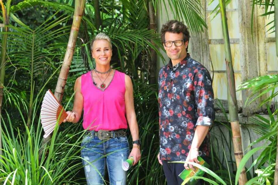 Dschungelcamp: Dschungelcamp: RTL gibt wichtige Änderung bekannt