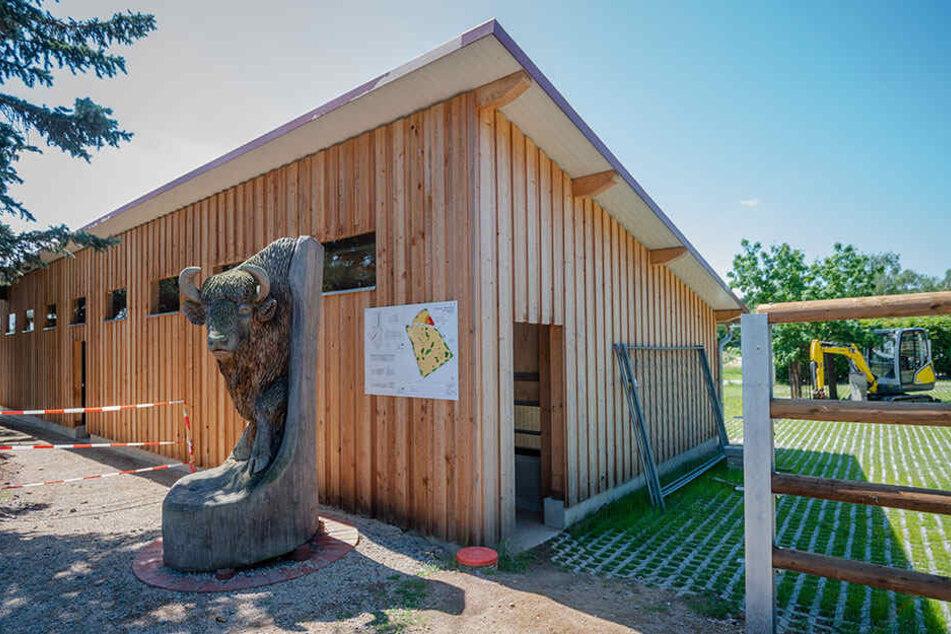 Dank der Spendenbereitschaft konnte der neue Stall schon gebaut werden.