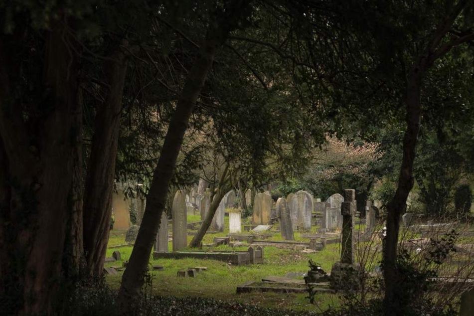 18 Grabstätten auf dem Friedhof Halle-Trotha sind verwüstet worden. (Symbolbild)