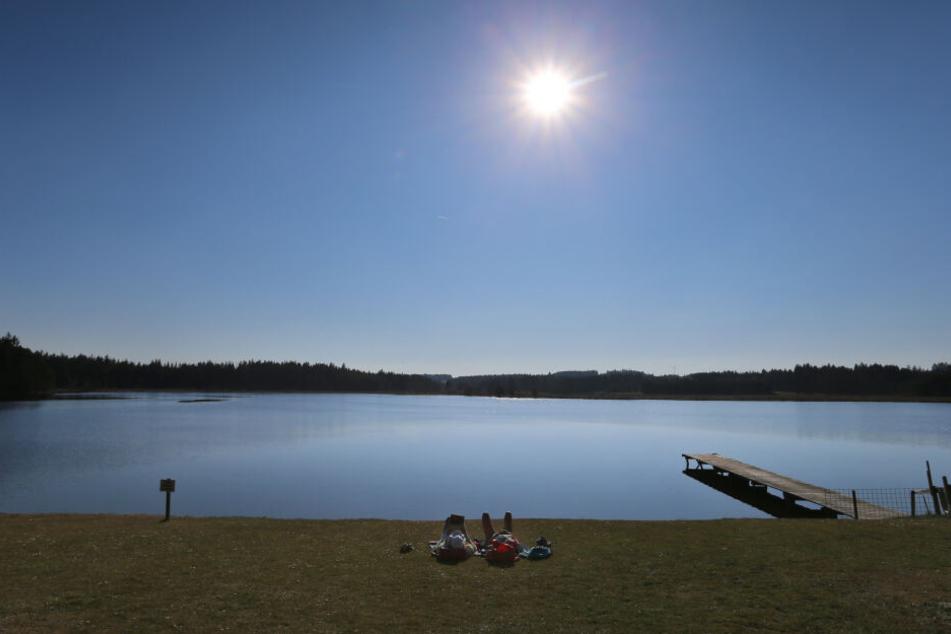 Am Sonntag nochmal Sonne tanken, dann sagt der Frühling wieder Servus!