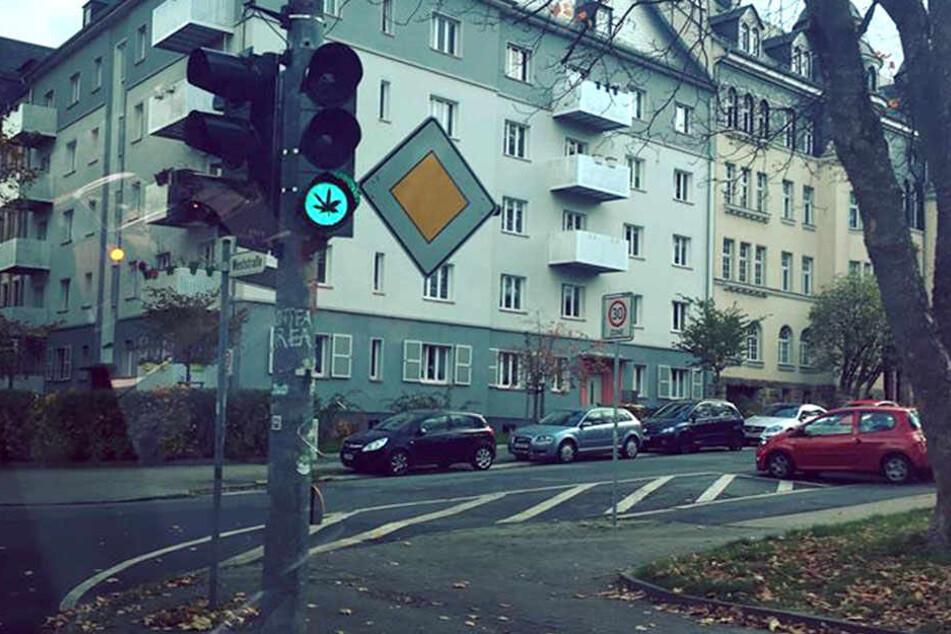 Grünphase mit grünem Kraut: Auf dieser Ampel an der Weststraße / Horst-Menzel-Straße leuchtet ein Cannabis-Symbol.