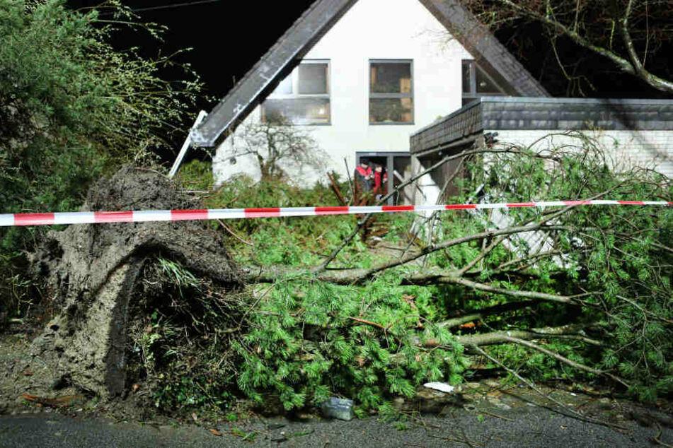 Das Sturmzentrum traf die Hauptstraße der Ortschaft, mehrere Häuser können vorerst nicht mehr bewohnt werden.
