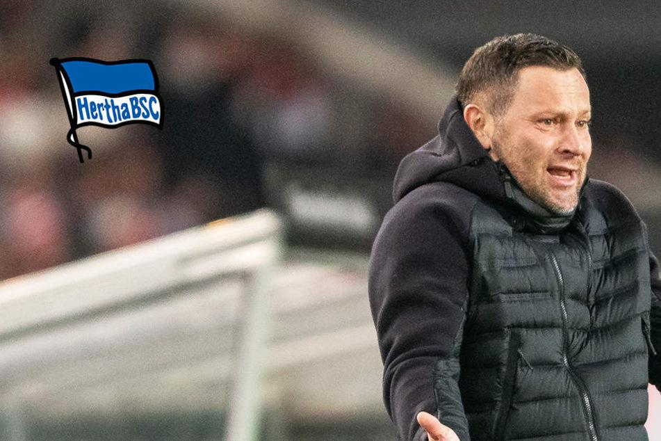 Bitter! Hertha verspielt Führung in Stuttgart und verliert beim VfB!