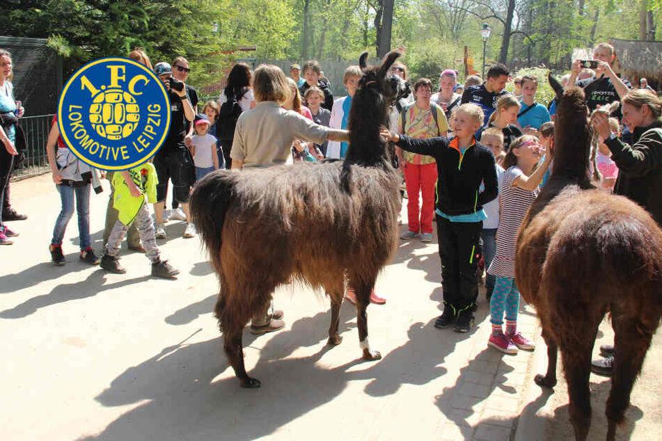 Lok Leipzig und der Zoo bescheren benachteiligten Kindern unbeschwerte Ostern