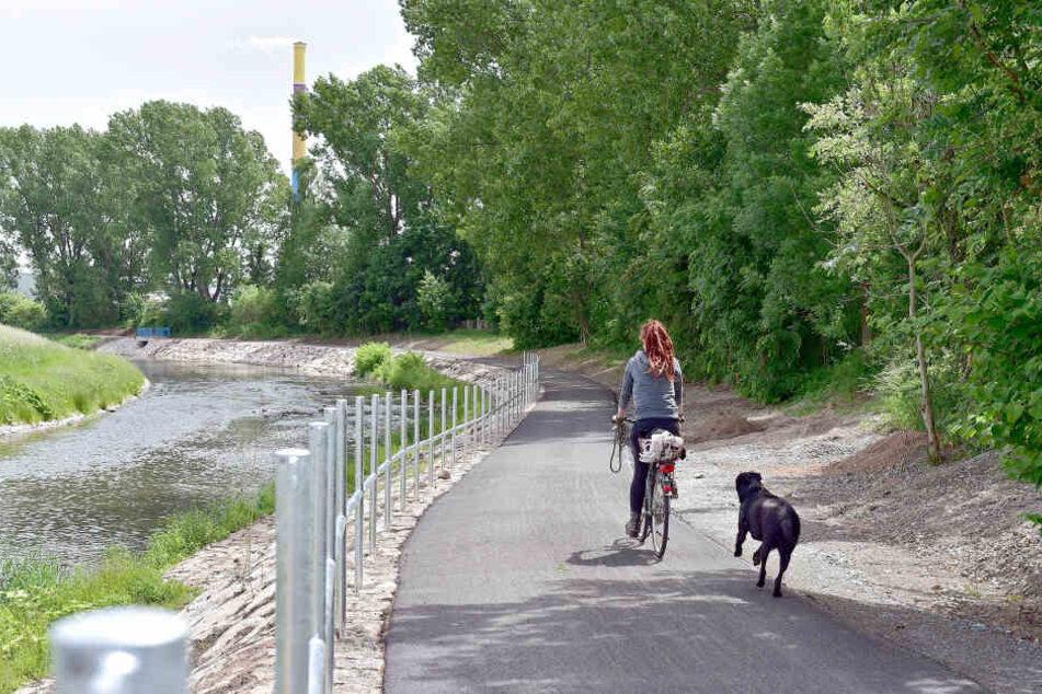 Radeln entlang der Chemnitz: Auf dem Abschnitt zwischen Markersdorf und Diethensdorf können Fahrradfreunde erst 2020 starten.