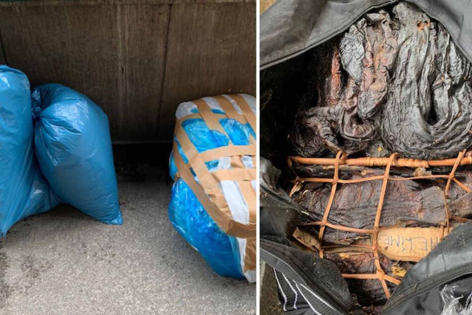 Ekel-Alarm: Was die Polizei in diesem Gepäck entdeckt, lässt einen würgen