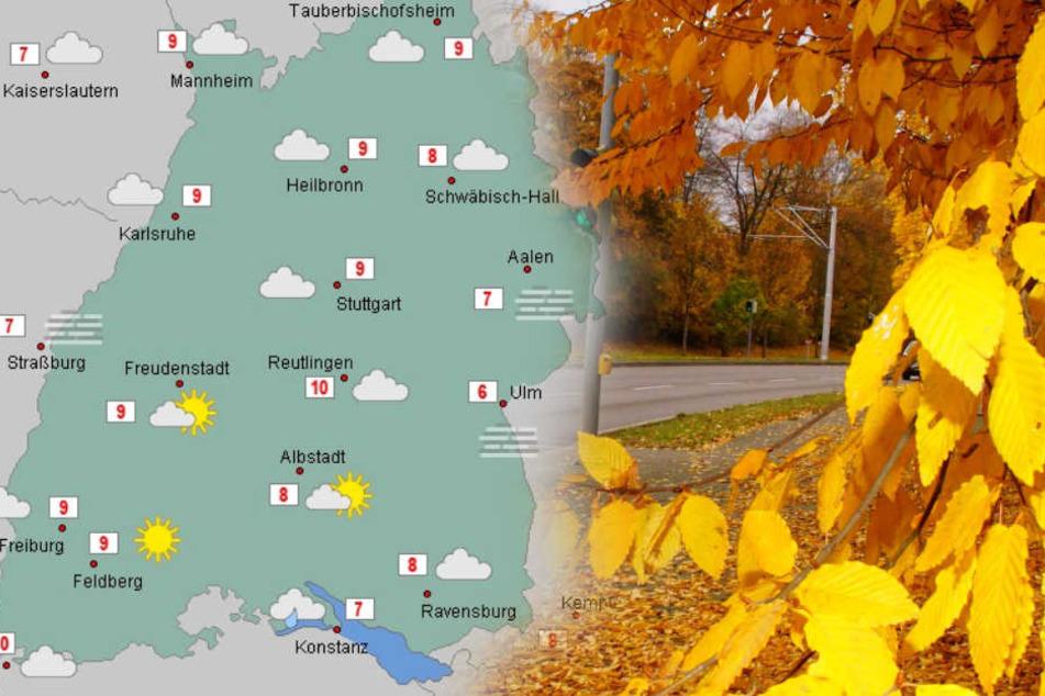 Regenschirm, aber auch die Sonnenbrille nicht vergessen am Wochenende. (Fotomontage)