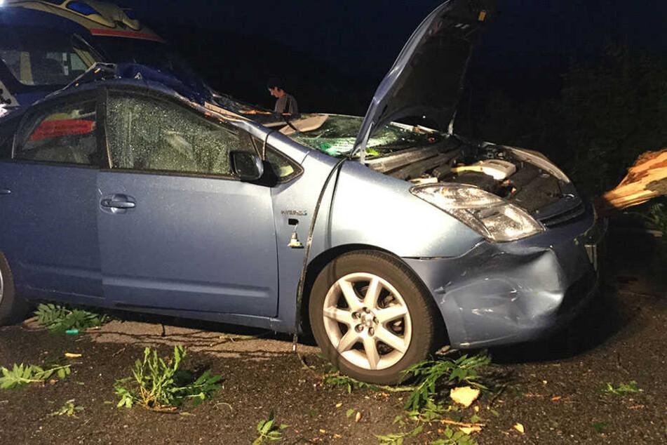 Der Ast zerstörte das Dach des Fahrzeugs.