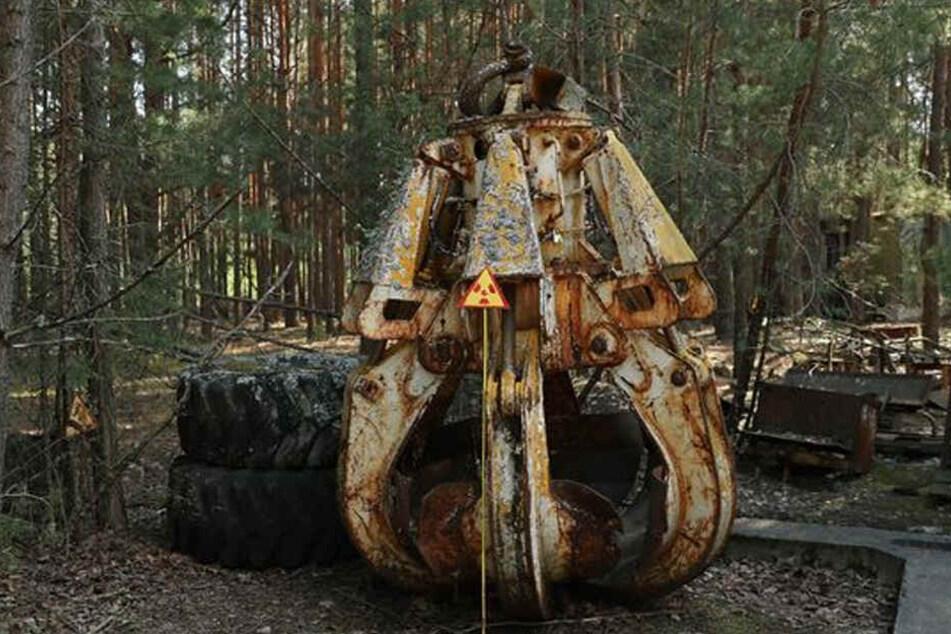 Die verstrahlte Klaue in einem abgelegenen Teil des Waldes.