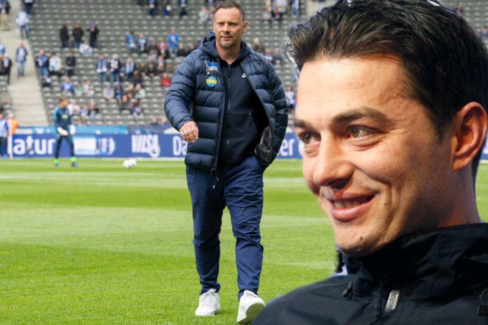 Ante Covic wird der Nachfolger von Pal Dardai? (Bildmontage)