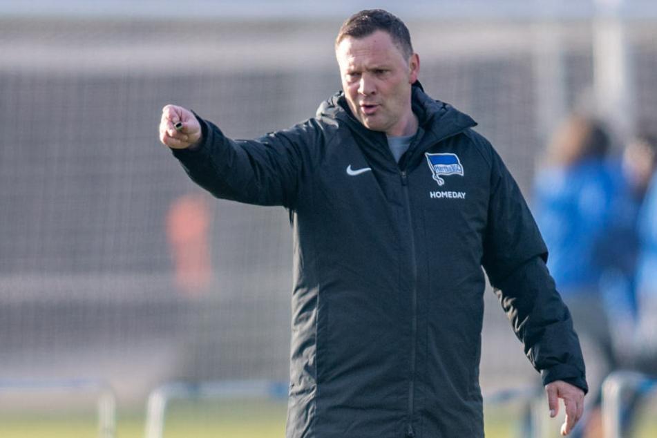 Pal Dardai (44) zeigt im Training die Richtung an. Gegen Eintracht Frankfurt will der Hertha-Coach offensiv agieren.