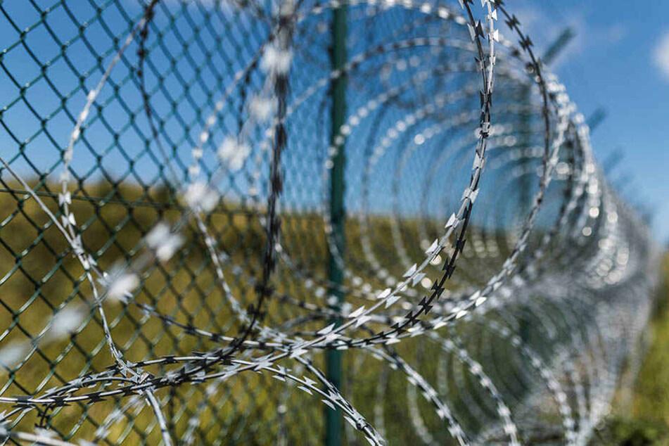 """Der """"Dschungel von Calais"""" dient als beliebte Flüchtlingsroute von Frankreich nach Großbritannien und soll jetzt mit einer Mauer gesichert werden."""