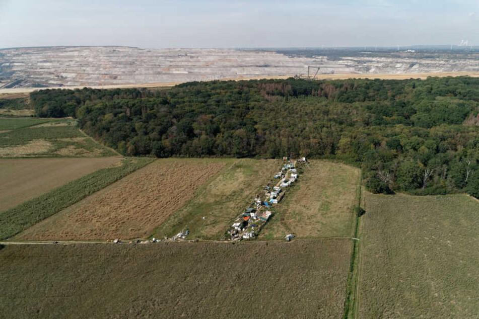 Der Hambacher Forst liegt an der Abbruchkante zum Braunkohle-Tagebau Hambach.