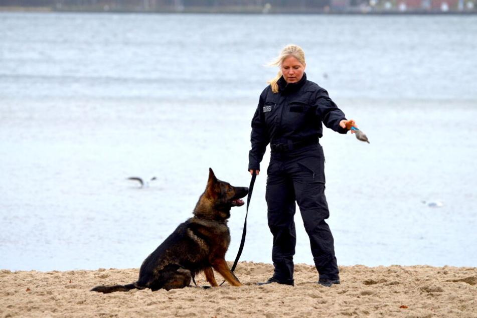 """Frauchen Sonja trainiert fleißig mit Polizeihund """"Chaos""""."""