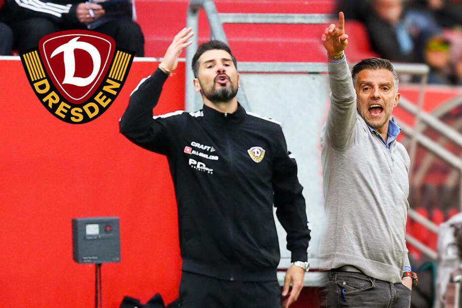"""Dynamo-Coach Fiel vermisste """"Fair Play"""" bei Oral"""