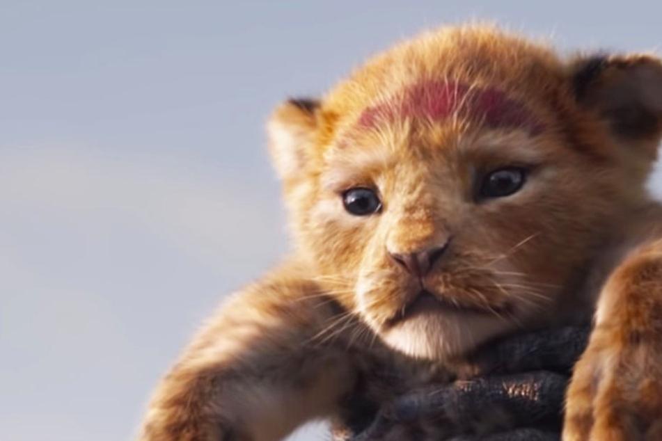 """Verzaubernd: Erster Trailer von """"Der König der Löwen""""!"""