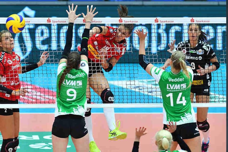 So sah es im Oktober 2017 gegen Münster aus: hier hinterm Netz Sasa Planinsec (Dresden) gegen Ex-DSC-Girl Juliane Langgemach (Münster).