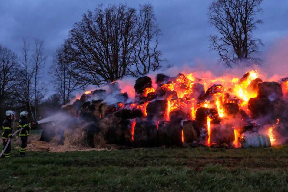 Feuerwehrleute kämpfen gegen einen Brand in Volksdorf.