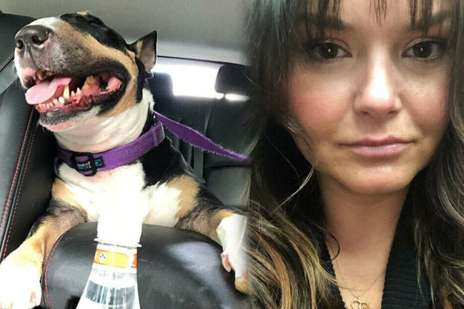 Wegen ihres Hundes musste sie sogar in die Notaufnahme: Besitzerin sieht nur einen Ausweg
