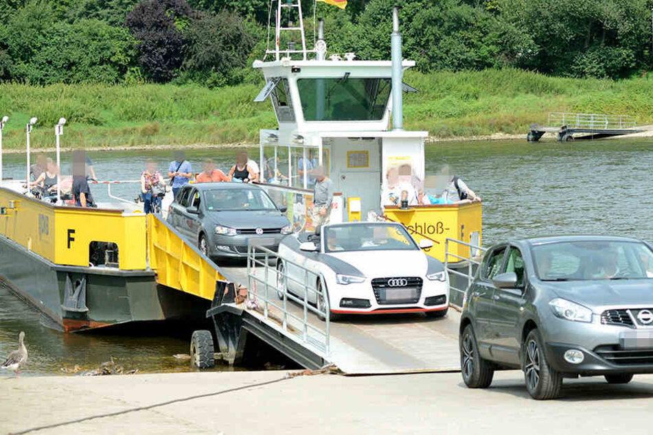 Auf einer Elbfähre in Zahna-Elster soll ein Mann absichtlich den Rückwärtsgang seines Autos eingelegt und damit sich und seine Frau in die Fluten gestürzt haben (Symbolbild).