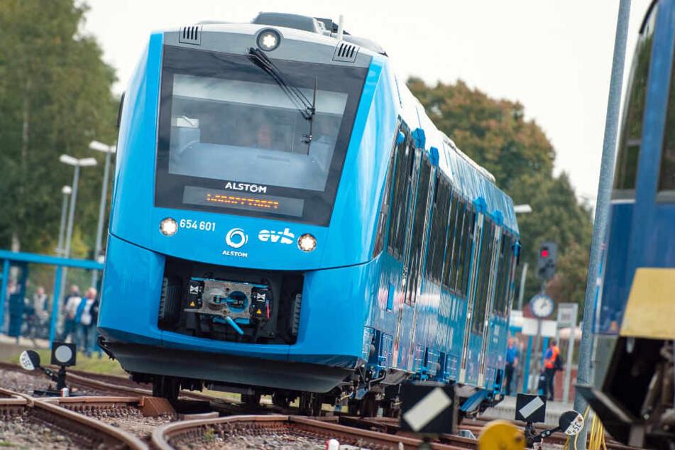 Die mit Wasserstoff betriebenen Züge fahren seit September zwischen Cuxhaven und Buxtehude.