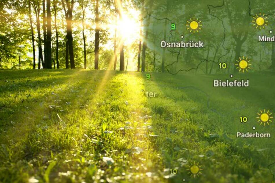 Strahlende Sonne und Frühlings-Temperaturen am Wochenende