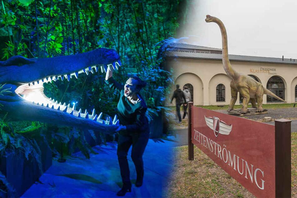 Da staunste! Dinos sind in Dresden eingezogen