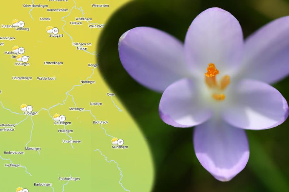 Nach dem frostigen Wetter der letzten Tage startet die neue Woche mit deutlich höheren Temperaturen. (Symbolbild/Fotomontage)