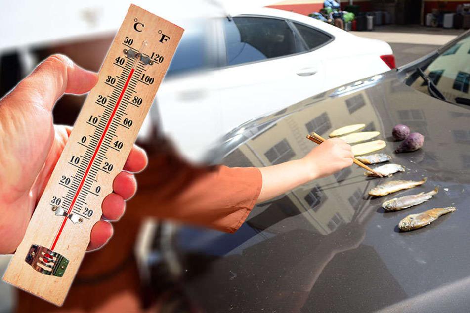 Bei Temperaturen um 40 Grad: Hier wird die Motorhaube zum Grill