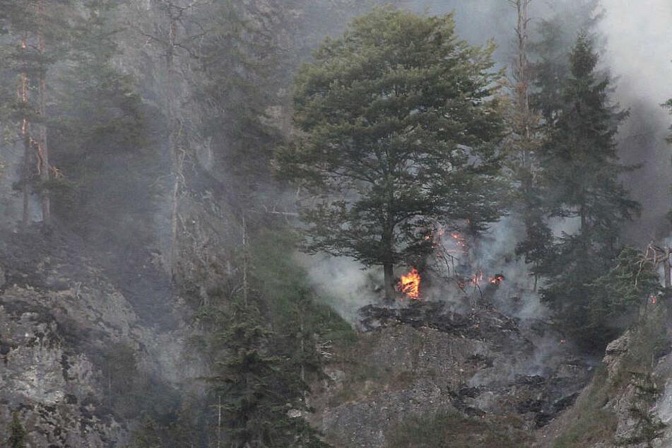 DAs Feuer im Bergwald bei Oberaudorf ist wieder aufgeflammt