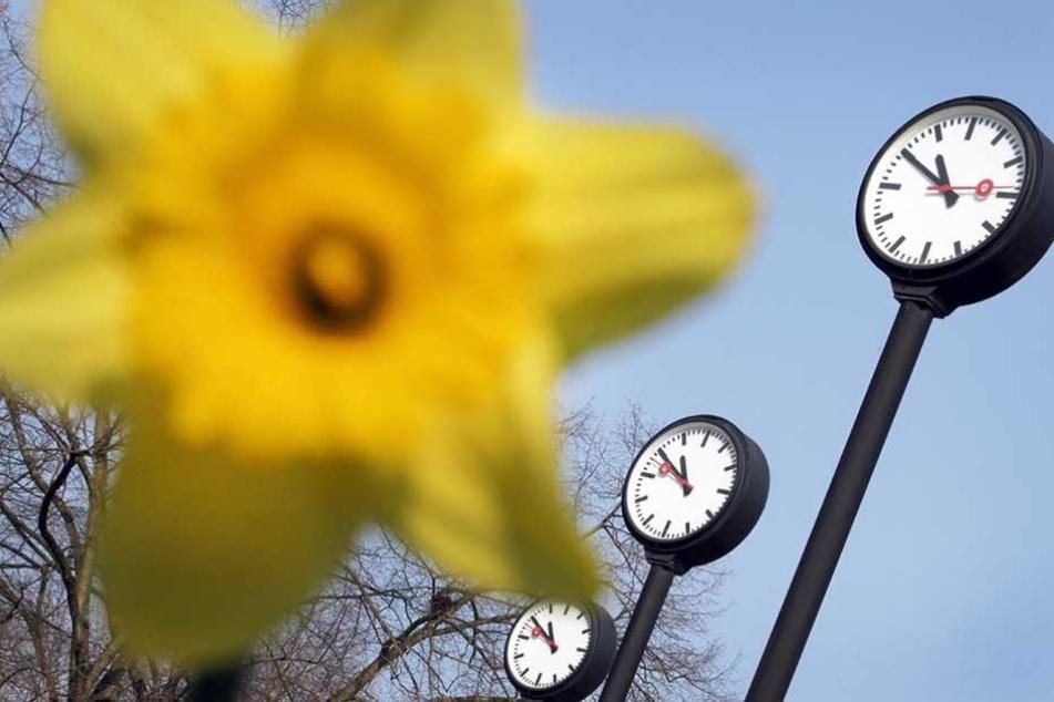 Nach EU-Entscheid: Wie schnell wird Sommerzeit jetzt abgeschafft?